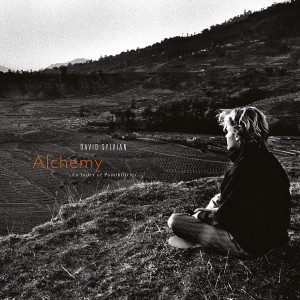 DAVID SYLVIAN Alchemy: An Index of Possibilities (DELUXE 180g REMASTERED)
