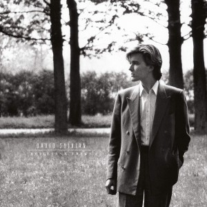 DAVID SYLVIAN Brilliant Trees (DELUXE 180g REMASTERED)
